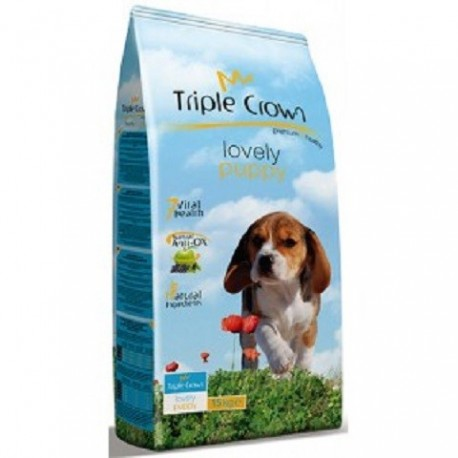 TRIPLE CROWN LOVELY PUPPY