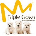 PIENSO TRIPLE CROWN
